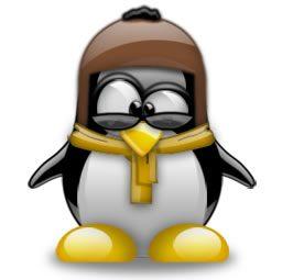 Exemplu de avatar funny