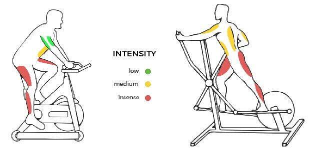 elliptical-and-stationary-bike-tone-what-muscles